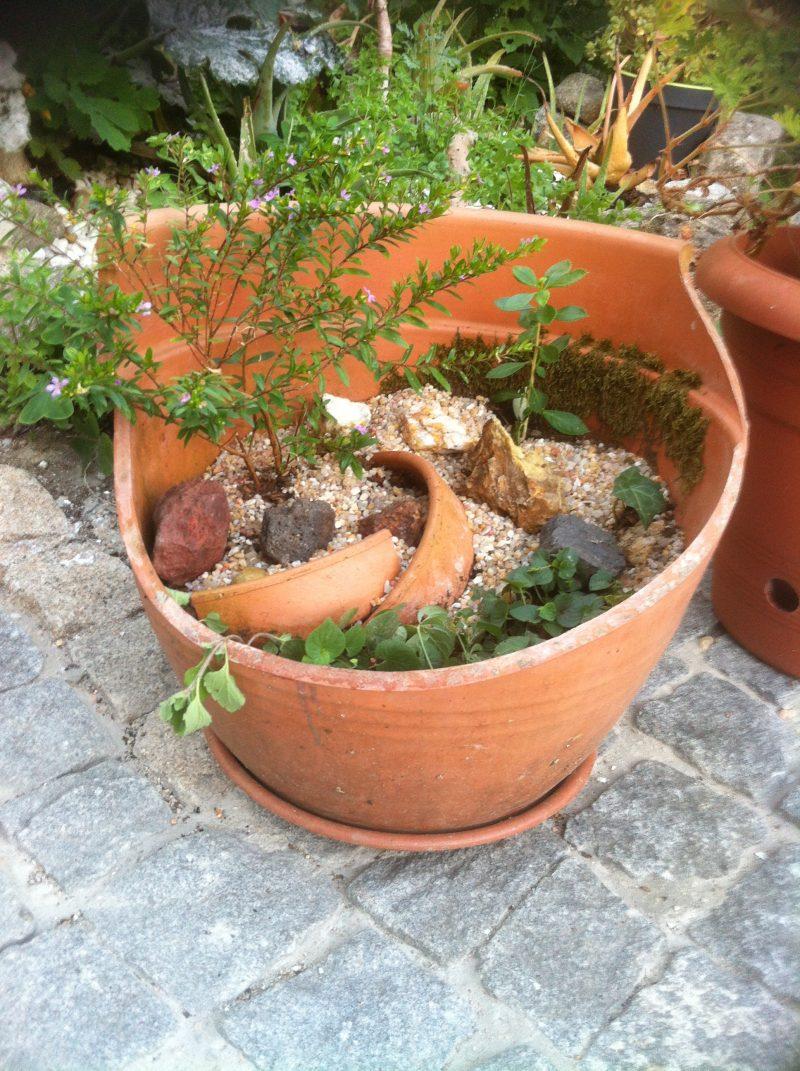 Proteger las plantas para pasar el invierno